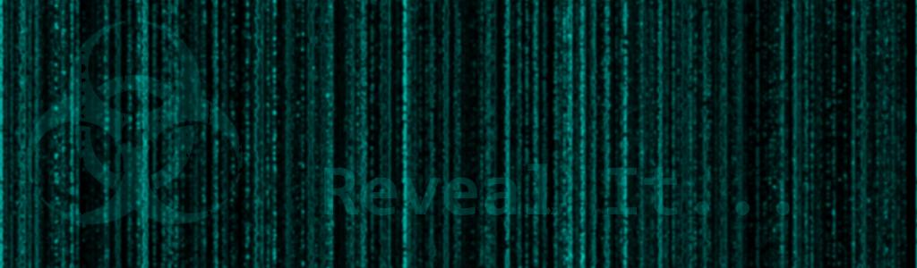 Reveal-It.de